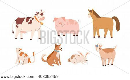 Set Of Farm And Domestic Animals And Pets. Adorable Cow With Bell, Funny Pig, Horse, Goat, Rabbit, D