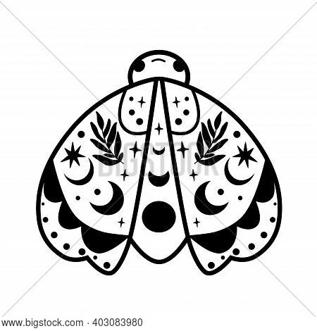 Moth Drawing Isolated Illustration. Black Celestial Moth. Cute Insect Butterfly. Flyig Moon Design.