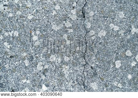 Abstract Old Beton Texture Wall With Moss Outdoor. Textured Grunge Background. High Quality Photo