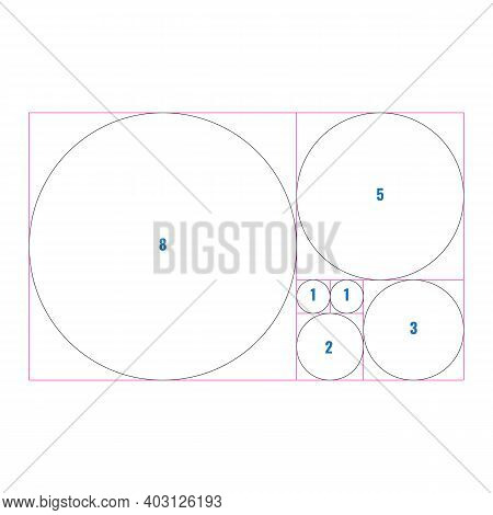 Golden Section Ratio Or Proportion Circles. Harmonious Concept With Circles. Vector Illustration..