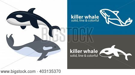 Orca Killer Isolated Vector Icon. Sea Line Solid Flat Icon