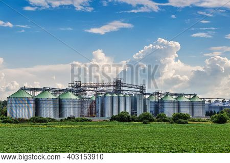 Agricultural Silos. Storage And Drying Of Grains, Wheat, Corn, Soy, Sunflower Against The Blue Sky W