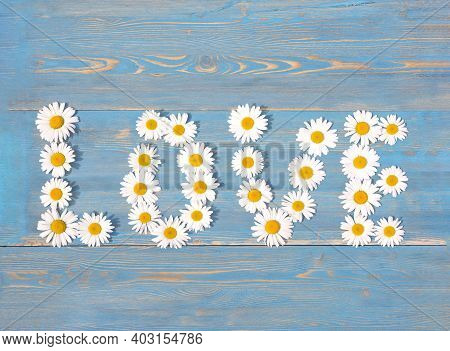 Word Love Made From Chamomile On A Blue Wooden Background.