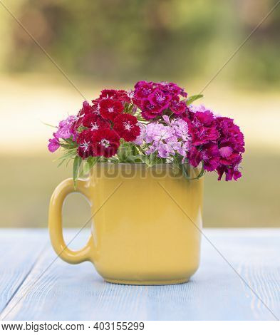 Beautiful Phlox Flowers In A Yellow Glass On A Table In A Summer Garden