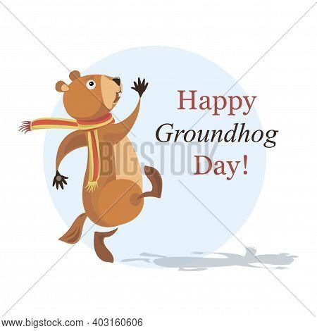 Groundhog, Shadow. Happy Groundhog Day. Cute Walking Marmot. Vector Illustration Design With Funny C