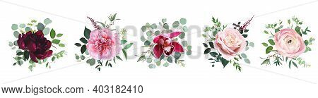 Burgundy Red Peony, Dusty Pink Rose, Orchid, Blush Ranunculus Flowers Vector Design Wedding Bouquets