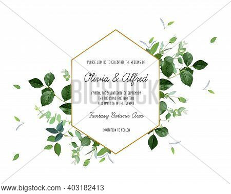 Herbal Geometric Vector Frame. Hand Painted Plants, Branches, Leaves On A White Background. Greenery