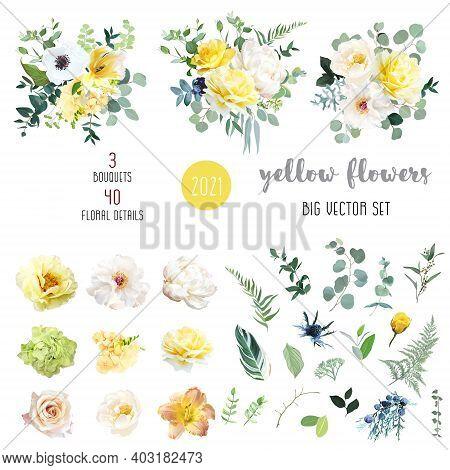 Yellow Rose, Hydrangea, White Peony, Lily, Anemone, Spring Garden Flowers, Eucalyptus, Greenery, Fer