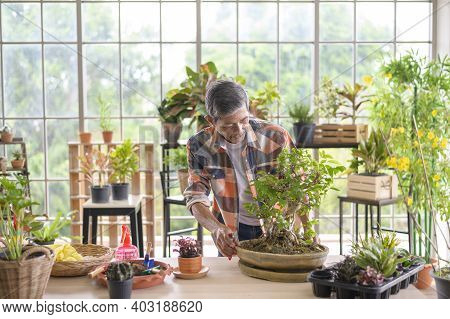 Happy Senior Asian Retired Man  Is Relaxing  And Enjoying  Leisure Activity In Garden At Home.