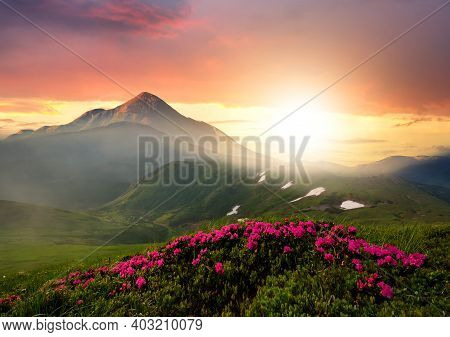 Sunset Landscape With Green Grass Meadow, Red Blooming Flowers, High Peaks And Foggy Valley Under Vi