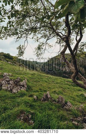 Scenic View From The Top Of Cheddar Gorge Near The Village Of Cheddar, Somerset, England, Framed By
