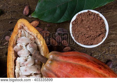 Detail Of Cocoa Fruit With Cocoa Powder On Raw Cocoa Beans.