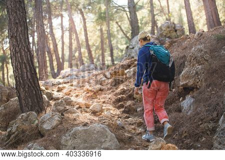 A Girl Walks Through The Woods. Hiking In The Mountains. A Woman Is Walking In The Park. Active Life