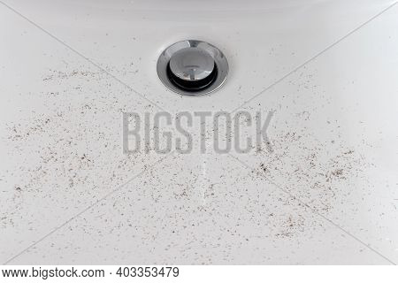 Hair Stubbles In Sink After Shaving Close Up.