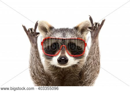 Skunk Raising Hands With Red Glasses White Background