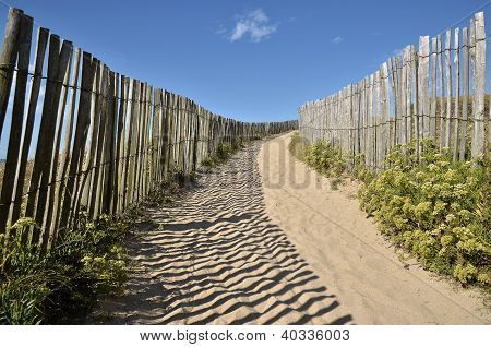Path the dunes of Quiberon in France