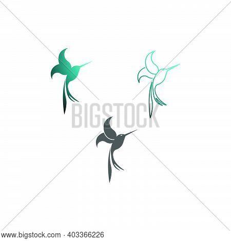 Hummingbird Logo Icon Creative Design