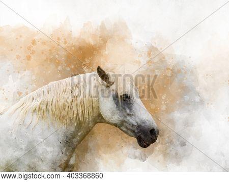 Horse Head, Farm Animal Isolated. Watercolor Background Illustration Set. Isolated Horse Illustratio