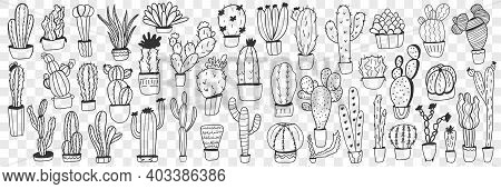 Cactus In Pots Doodle Set. Collection Of Hand Drawn Various Cactus Plants In Pots For Home Growing I