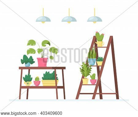 Room Or Office Interior With Various Indoor Plants On The Shelves, Stands, Tables. Vector Textured I