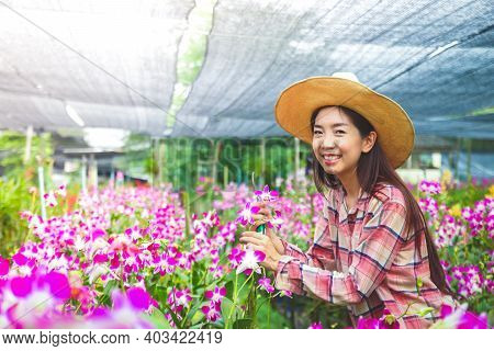 Asian Girl, Owner Of Orchid Flower Farm Export Borrow Smiling, Wearing A Hot Sun Hat