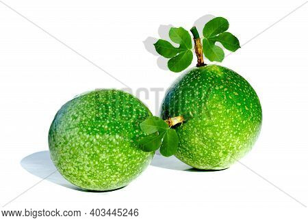A Single Fruit Of Green Passion Fruit The Fruit Is Round Or Oval And Succulent. Fruit Size Is Approx
