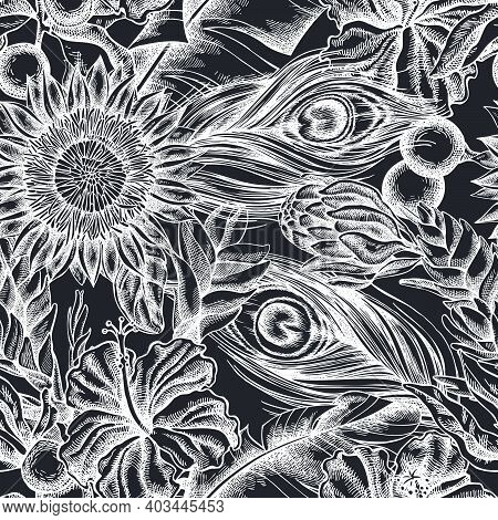 Seamless Pattern With Hand Drawn Chalk Banana Palm Leaves, Hibiscus, Solanum, Bromeliad, Peacock Fea