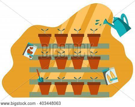 Vector Illustration Of Seedlings. Seedlings In Pots. Vegetable Seeds. Planting And Growing Vegetable