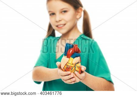 Girl Wearing A Green Medical Uniform And Holding An Anatomical Heart Model In Hands. Concept Of Card