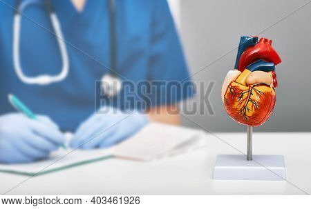 Anatomical Model Of Human Heart On Doctor Table In A Cardiology Office. In The Background, A Cardiol