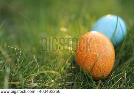 Easter Egg Hunt.easter Holiday. Searching For Easter Eggs In The Grass. Blue And Orange Easter Paint