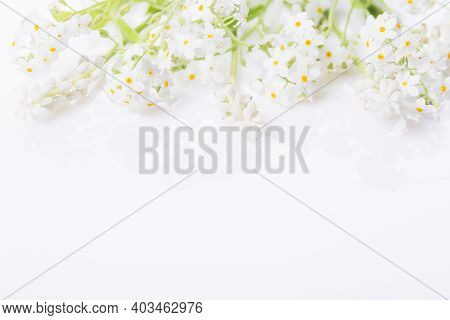 Spring Frame Of Small Flowers And Forget-me-not, Floral Arrangement