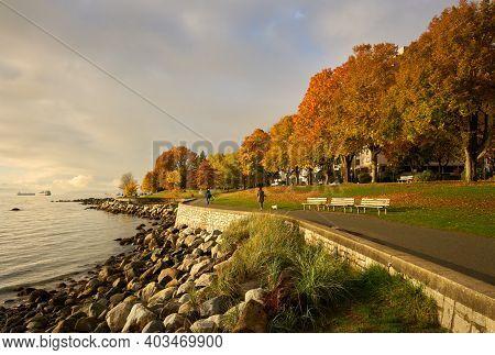 Stanley Park Seawall Path Autumn. Autumn Leaves Line The Stanley Park Seawall In Vancouver's West En