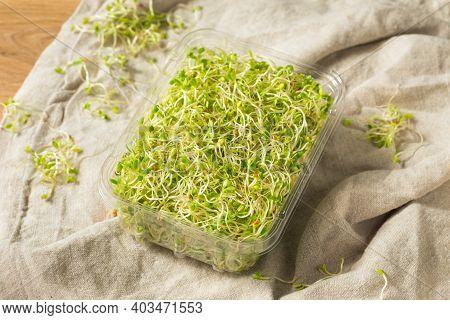 Organic Green Raw Alfalfa Sprouts