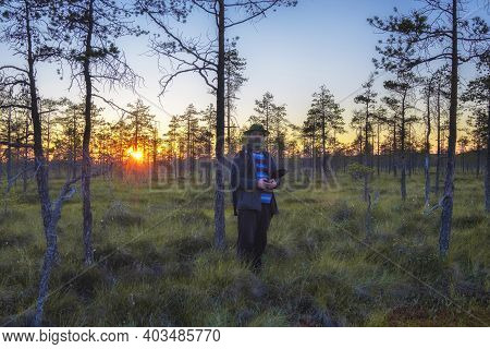 Man, Berry Picker  In The Swamp Wearing A Mosquito Hat At Sunset