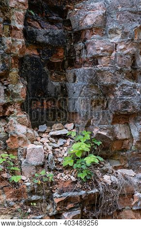 Abandoned Military Tarakaniv Fort (other Names - Dubno Fort, New Dubna Fortress) - A Defensive Struc