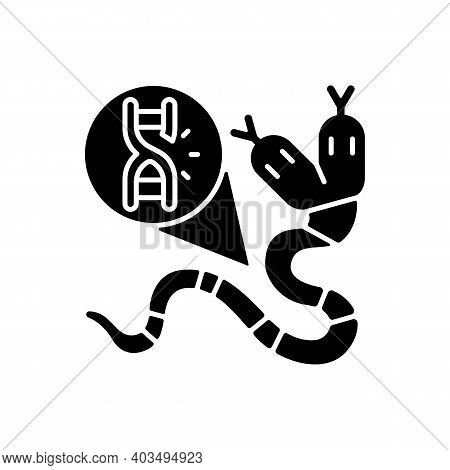 Genetic Mutation Black Glyph Icon. Genome Sequence With Damage. Gene Manipulation. Dna Structure Of
