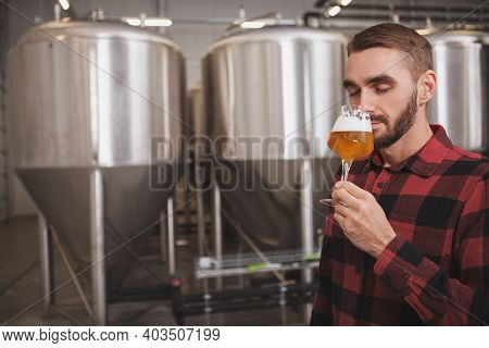 Attractive Male Brewer Smelling Aromatic Freshly Brewed Beer At Microbrewery, Copy Space
