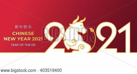 Chinese New Year. Chinese New Year 2021. Happy Chinese New Year 2021 Year of the Ox vector background illustration design. 2021 Happy Chinese New Year background. 2021 Chinese New Year. Chinese New Year 2021 banner and background vector template