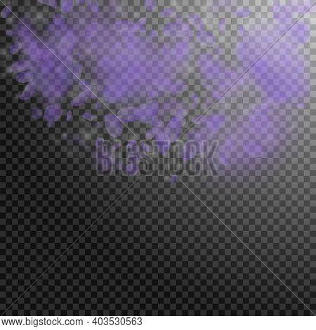 Violet Flower Petals Falling Down. Quaint Romantic Flowers Semicircle. Flying Petal On Transparent S