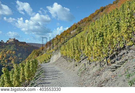 At Red Wine Hiking Trail In Ahrtal,germany