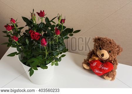 Brown Bear With A Heart And A Bouquet Of Roses. Top View Of A Large Beautiful Bouquet Of Indoor Smal