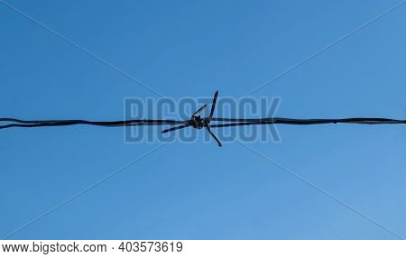 Barbed Wire Isolated On Clear Blue Sky Background, Close Up Front View Of Horizontal Metal Wire Mesh