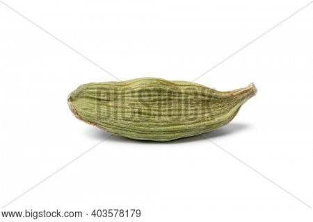 Single green cardamom pod close up isolated on white background