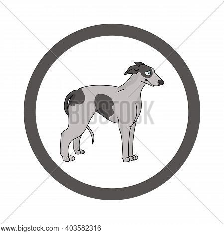Cute Cartoon Greyhound In Dotty Circle Dog Vector Clipart. Pedigree Kennel Doggie Breed For Kennel C