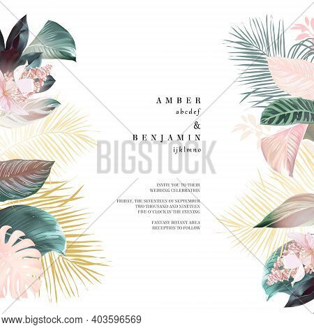 Tropical Elegant Pastel Frame Arranged From Exotic And Dried Palm Leaves. Design Vector. Paradise Pl