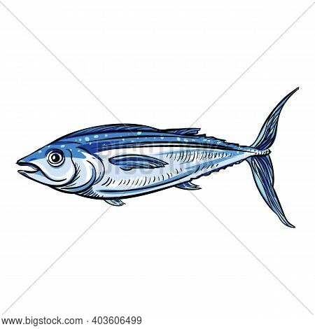 Seafood Tuna Icon. Cartoon Of Seafood Tuna Vector Icon For Web Design Isolated On White Background