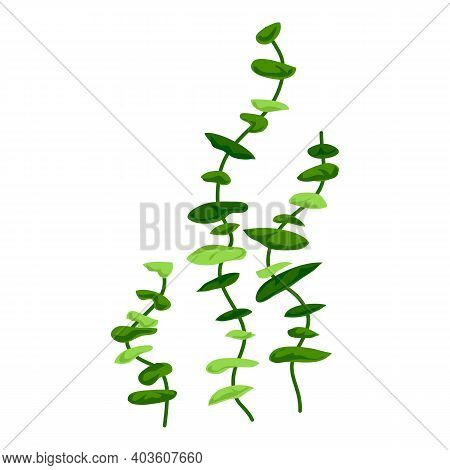 Aquarium Long Plants Icon. Cartoon Of Aquarium Long Plants Vector Icon For Web Design Isolated On Wh