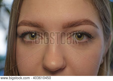 Extreme Closeup Image Of Woman's Eyes And Nose, Frontal Projection