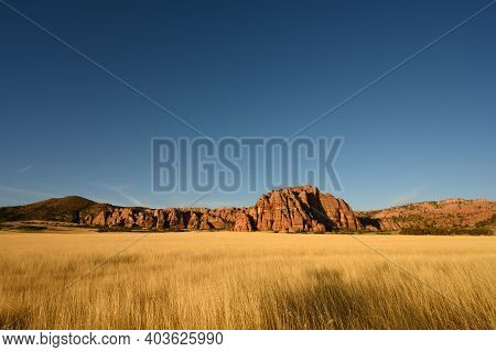 Dry Grassy Field And Red Rocks At Sunset In Zion Wilderness